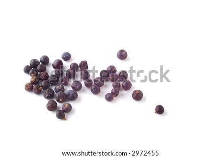 Dried juniper berries on white background with soft shadow. Used in cooking and also as the flavouring for gin.