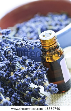 Dried lavender herb and essential aromatherapy oil