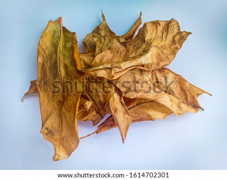 Dried leaves. Dried leaves are not garbage, dried leaves can be processed into organic fertilizer