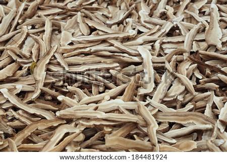 Dried Lingzhi mushroom #184481924