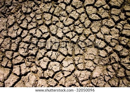 dried mud from the Etosha Pan, Etosha National Park Namibia