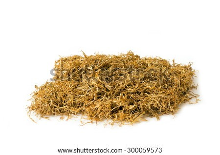 Dried of tobacco isolated on white background #300059573