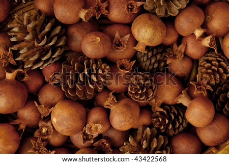 dried pine cones and pomegranates