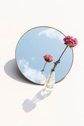 Dried pink peony flower in a clear vase reflected on a mirror