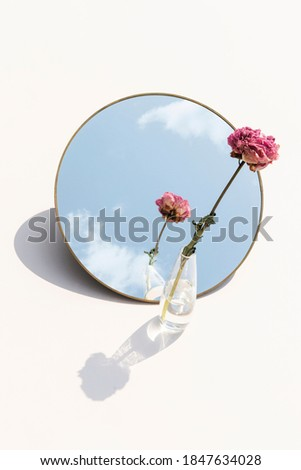 Dried pink peony flower in a clear vase reflected on a mirror Photo stock ©
