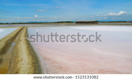 Dried pink salt at salt pan in Samutsongkram province during summer time of Thailand,  South East Asia,  Asia.