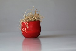 Dried plant in a red pot on a gray background. A wilted flower in a pot. The indoor flower is dry. A dead plant. Close-up view.