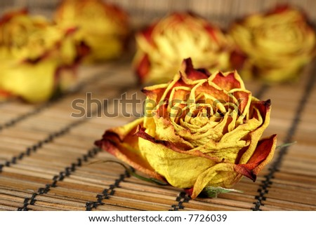 Dried red and yellow rose to last forever
