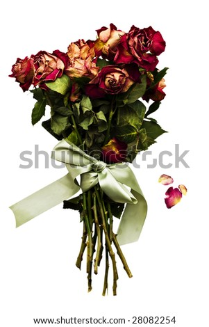 Dried rose bouquet with falling petals and green satin bow. Isolated on a white background.