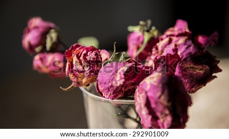 dried rose flower with dried leafs, Withered rose in a vase