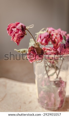 dried rose flower with dried leafs, Withered rose in a vase, Vintage Style