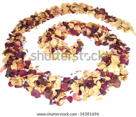 dried rose petals on white background
