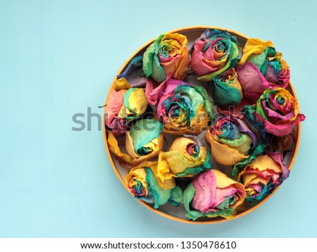 Dried rosebuds on a blue background. top view with copy space #1350478610