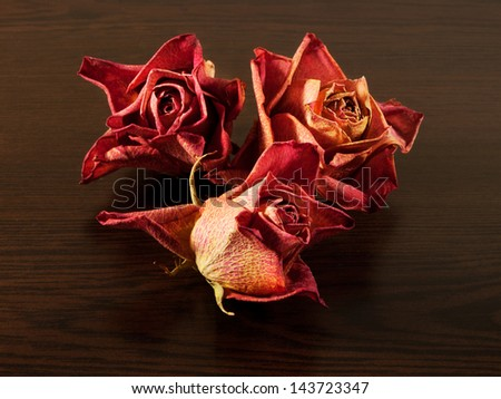 Dried roses on the table of dark wood. Dry flowers collection.