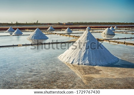 Dried salt at salt pan ready for harvesting in Tainan, Taiwan                                                                                                                                 Salt pans