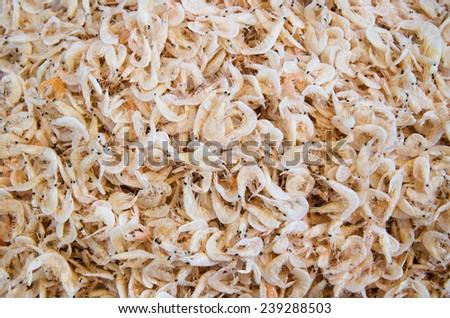 Dried shrimp Stok fotoğraf ©