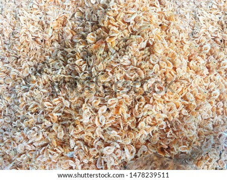 Dried shrimp. dried shrimp prepared for cooking in thailand market. Dried shrimp or dried salted prawn background, seafood background.