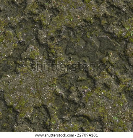 Dried Surface of the Swamp with Moss. Seamless Tileable Texture.