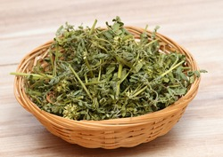 Dried Tribulus terrestris in the bowl.  Curative herb Tribulus terrestris and  its seeds called devil´s thorn.