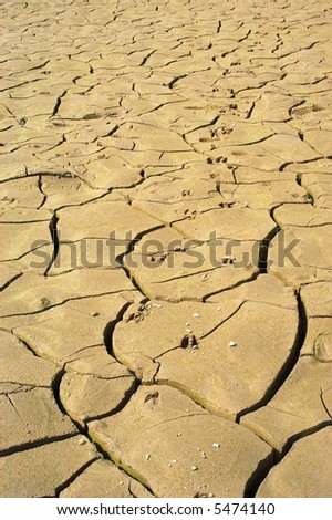 Dried up riverbed caused by drought