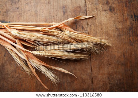 Dried wheat ears on a harvest table.
