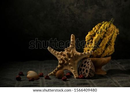 Dries Starfish and Decorative Pumpkin Still Life