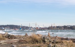 driftwood covered beach and big waves with a view of Fisgard Lighthouse and cranes from Coburg Peninsula, Victoria, British Columbia