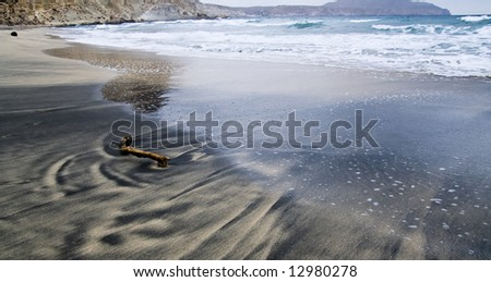 Driftwood in the sand in a volcanic beach