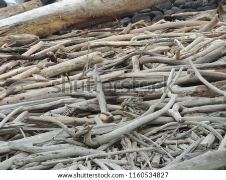 Driftwood unlimited on Kauai #1160534827