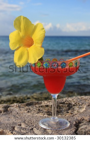 drink with flower on the seawall