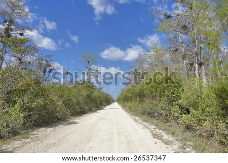 Drive through Everglades, Florida