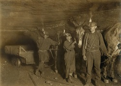 Drivers and Mules with young laborers in a West Virginia coal mine. October 1908 photo by Lewis Hine.
