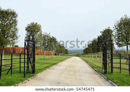 Driveway through a Country Estate