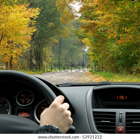 Driving in fall