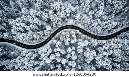 Driving in forest after snowfall, aerial drone view. #1260054280