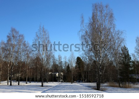 Driving in the winter wonderland called Finland during winter. In this photo you can see plenty of snow on ground, forest and clear blue daytime sky. White scenic landscape from Scandinavian winter. #1518592718