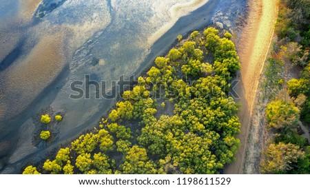 Drone Photo of mangroves beside mudflats, Bushland Beach, Townsville North Queensland, Australia