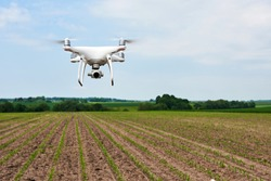 drone quad copter with high resolution digital camera on green corn field, agro