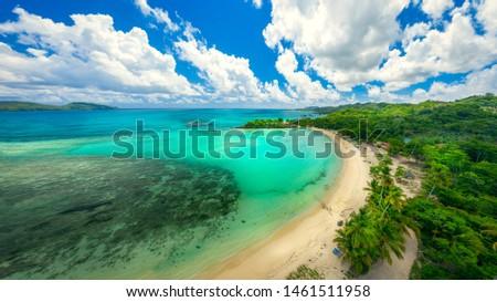 Drone shot of tropical beach.Samana peninsula,Playa Rincon beach,Dominican Republic. #1461511958