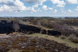 Drone view of recent arson attack at Waldridge Fell. Site of Special Scientific Interest in County Durham. Scorched black heather and gorse bushes after large heath fire.