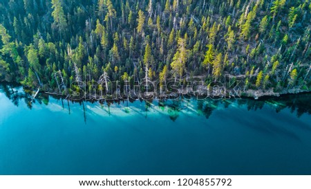 Drone view of the shore at Lake Tahoe California #1204855792