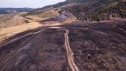 Drone view on a post Forest fire scorched land.