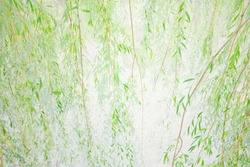 Drooping willow greenery leaves branches. Soft focus. Soft focus. Vintage paper background. Effect of watercolor paper.