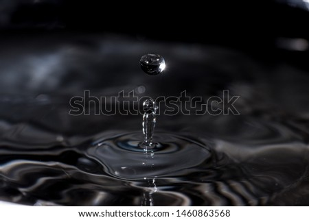 Drop the drop and start the action #1460863568