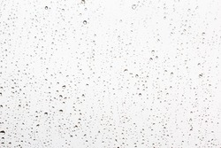 Drops of rain on a window glass