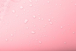 Drops of water on a color background. Pink. Selective focus. Toned.