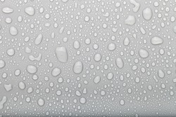 Drops of water on a color background. Selective focus. Gray.