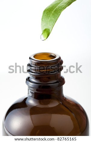 drops to bottle from leaf