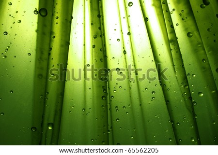 Drops with  green background