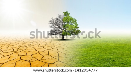 Drought and Green Nature  Landscape #1412954777